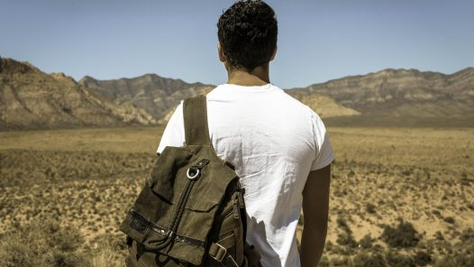 Man and desert