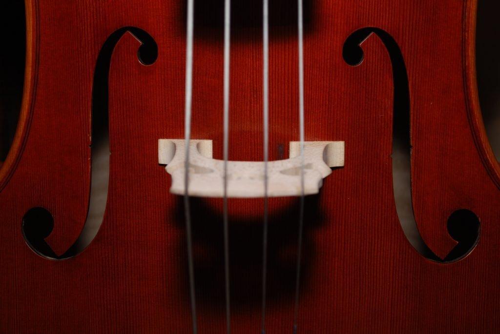 close up photo of violin