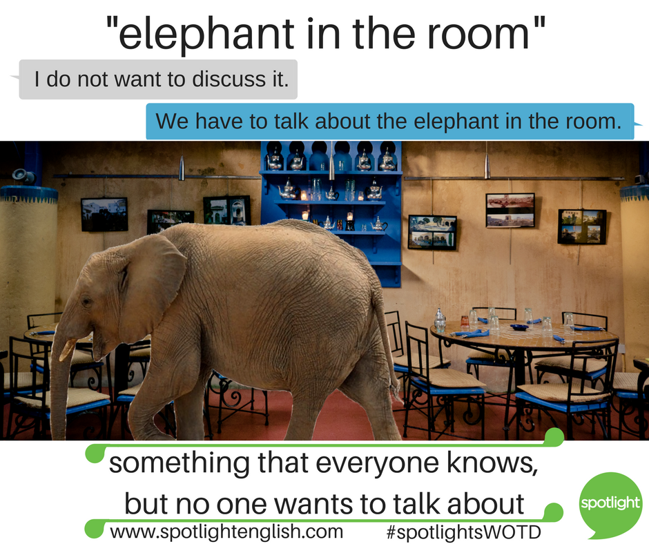 elephant in the room graphic