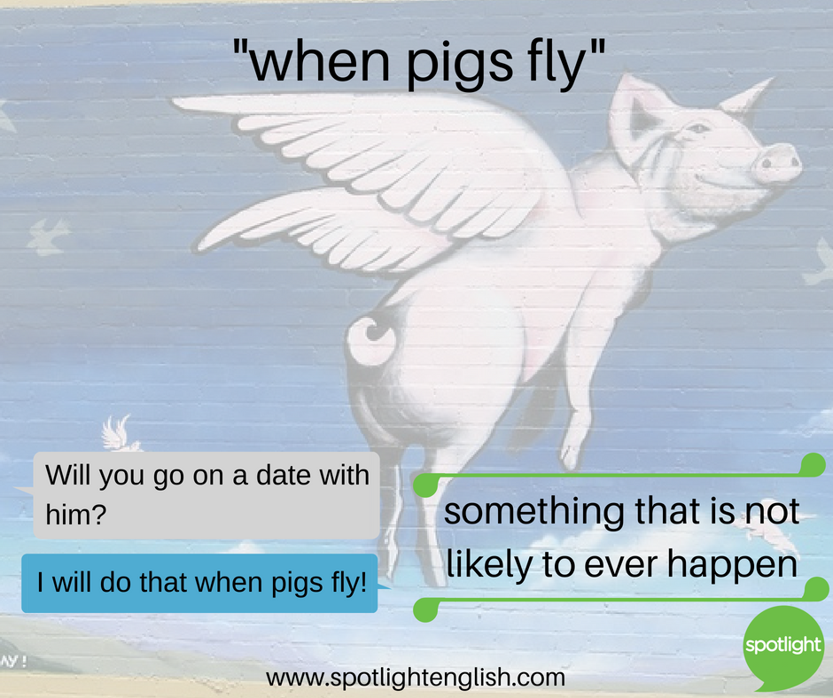 when pigs fly graphic